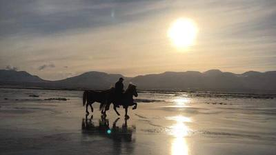Riding in the snow and on ice in ​Skagafjörður, North Iceland For experienced riders who would love to get to know the Icelandic Horse in its winter surroundings