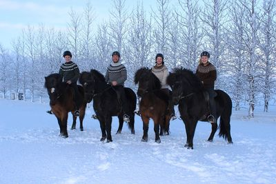 Horse Riding Winter Tour Stay on a farm and enjoy riding in the snow