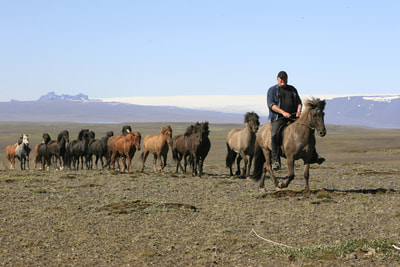 Adventurous multi-day riding tours with a herd of free horses running along.  Mainly sleeping bag accommodation in mountain huts and guesthouses. Enjoy the authentic ​mountain atmosphere in the evening.   Only for experienced riders.